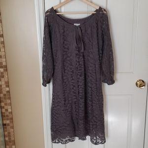 Garnet Hill, Gray Lace Bohemian Dress, sz 16